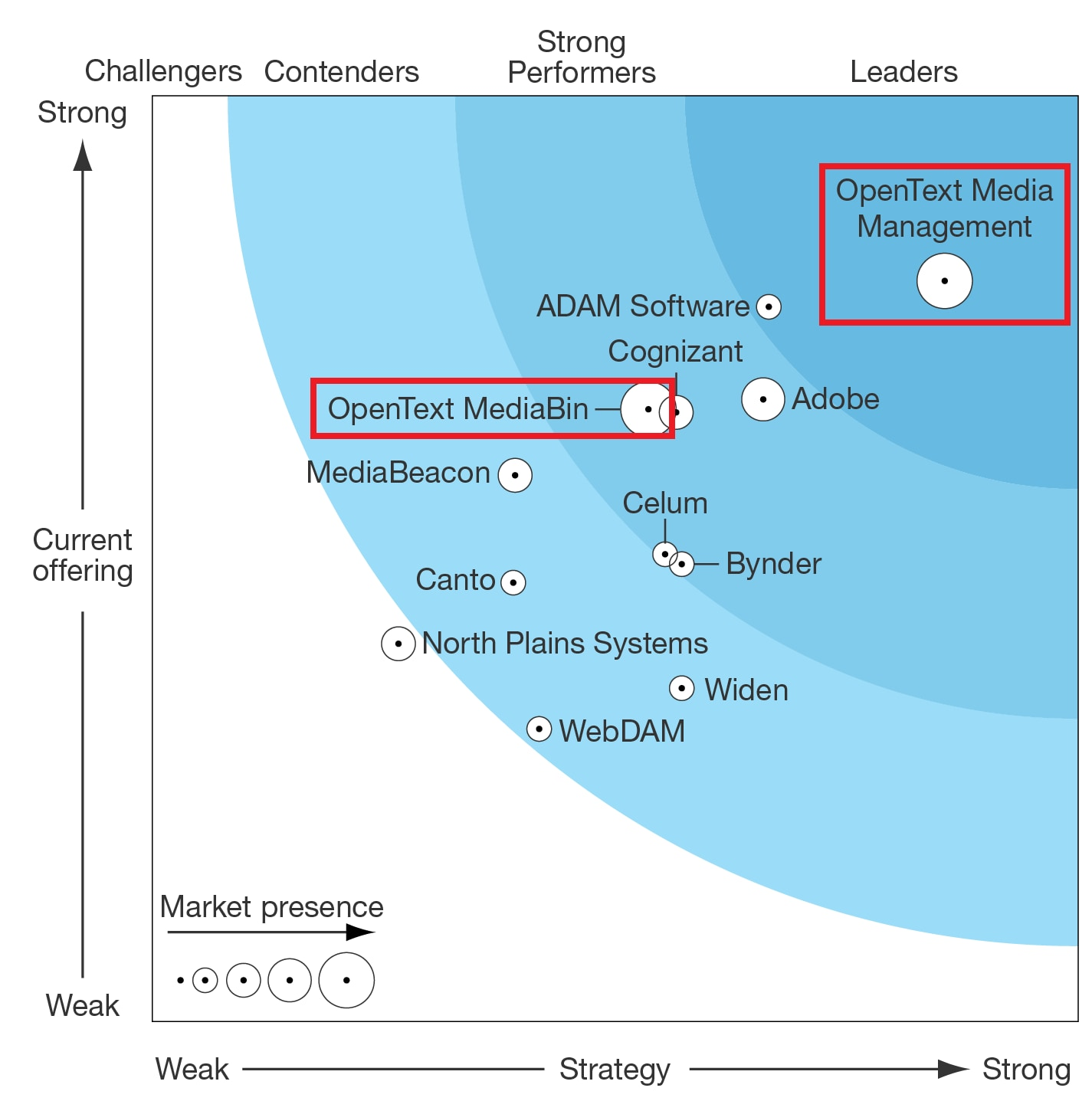 Forrester-DAM-Wave-Graphic